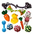 AMZpets 10 Most Popular Dog Toys Small Dogs & Puppies. Squeaky Toys | Rope Toys | Plush Games | Chewing Ropes | Balls | Rubber Bone | Carry Bag. Variety Playing Set Toss & Tug Play.