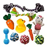 The 10 Most Popular Dog Toys by AMZpets - Squeaky Toys | Rope Toys | Plush Games | Chewing Ropes | Balls | Rubber Bone | Carry Bag. Playing Set for Toss & Tug Play. For Small Dogs & Puppies