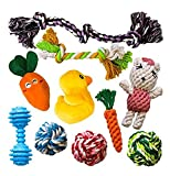 AMZpets 10 Most Popular Dog Toys For Small Dogs & Puppies. Squeaky Toys | Rope Toys | Plush Games | Chewing Ropes | Balls | Rubber Bone | Carry Bag. Variety Playing Set for Toss & Tug Play.