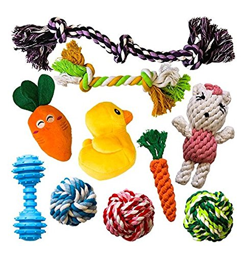 AMZpets 10 Dog Toys for Small Dogs and Puppies. Squeaky Toys | Rope Toys | Plush Games | Chewing Ropes | Balls | Rubber…
