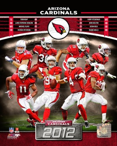 Arizona Cardinals x 2012 NFLチーム合成写真8 x Arizona 10 2012 B009C92H6U, ふるさと九州村:0bcff06c --- harrow-unison.org.uk