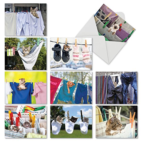 M6474OCB Hang In There: 10 Assorted Blank All-Occasion Note Cards Featuring Adorable Cats and Kittens Playing in Freshly Laundered Apparel Hanging From Clotheslines, w/White Envelopes.