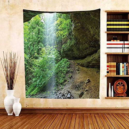 Gzhihine Custom tapestry Nature Tapestry Canyon Michigan Caves Memorial Falls in the Forest Eco Foliage Picture for Bedroom Living Room Dorm Army and Fern - City Outlets Prime Michigan