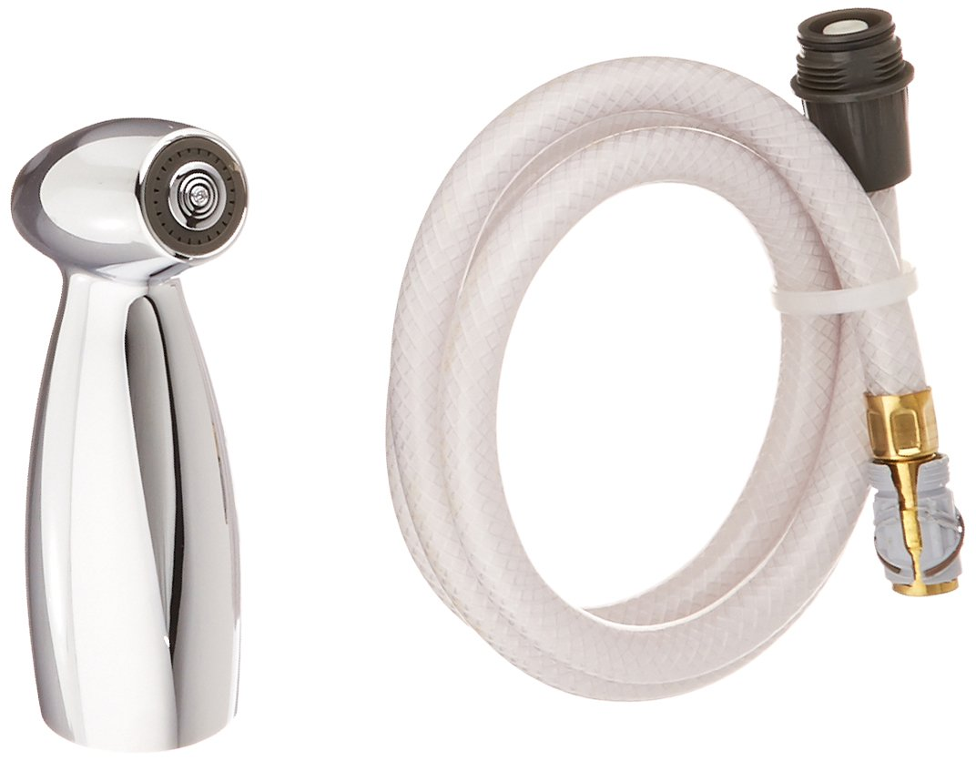 Delta Faucet RP40384 Graves Product Spray and Hose Assembly With Spray Support, Chrome