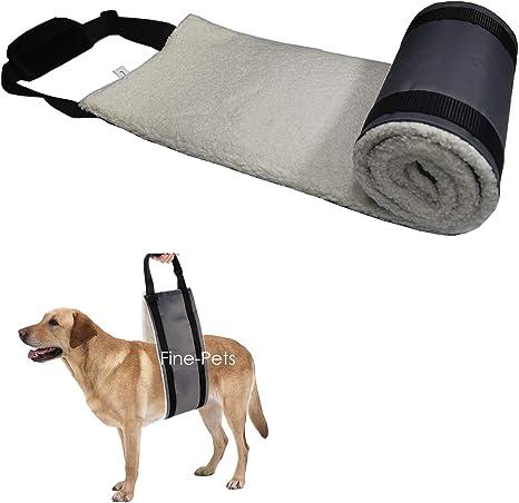 Arnés de elevación para perros Fine-Pets para patas traseras ...