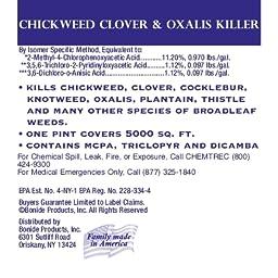 Amazon Com Bonide Chemical Chickweed Clover And Oxalis