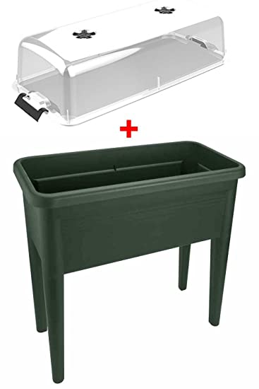 Angebot Hochbeet Green Basics Grow Table Xxl Grun Deckel Amazon