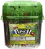 """Sour Punch  6"""" Individually Wrapped Assorted Flavors Sour Twists, 4.23-LB Tub"""