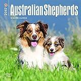 Australian Shepherds 2017 Mini 7x7 (Multilingual Edition)