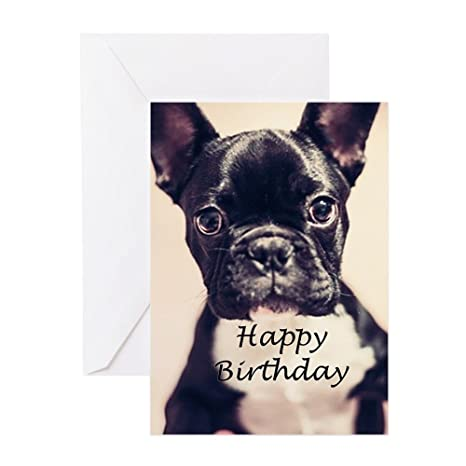 4797ebba72e Amazon.com   CafePress - Birthday French Bulldog - Greeting Card ...