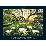 Faszination Natur 2018 - Fascinating Nature - Bildkalender quer (56 x 42) - Landschaftskalender