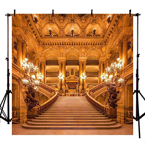 COMOPHOTO 10x10ft Polyester Photography Backdrops Beauty and The Beast Theme Party Photo Background