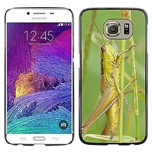 Cas Coq Case Cover // M00144408 Konik Saltamontes Insecto Macro // Samsung Galaxy S6 (Not Fits S6 EDGE)