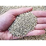 Geosism & Nature Vermiculite, agrivermiculite 1/3 mm (1 kg - c.a 9 lt) 616LdqXl9rL. SS150