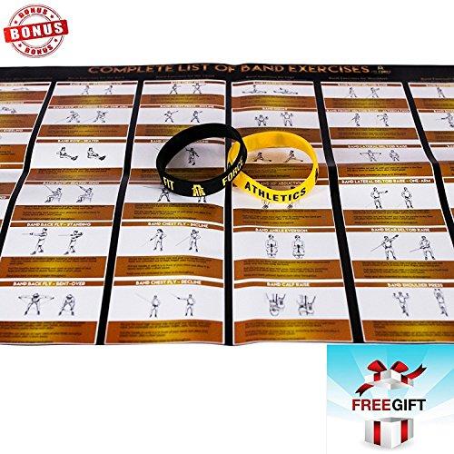 Fit Force Athletics Best Resistance Bands Exercise