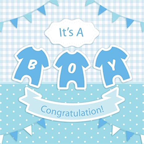 LFEEY 8x8ft Baby Boy Baby Shower Photography Backdrop Blue Check Clothes Mother-to-be