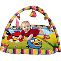 Angry Bird Fun Activity Play Gym - Multicolor