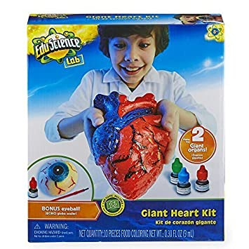 Edu Science Giant Heart Kit by Toys R Us
