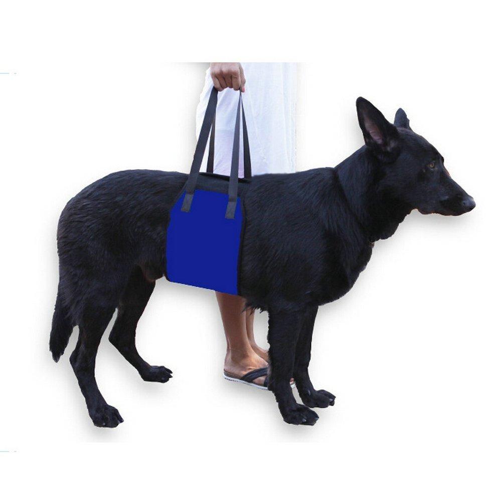 bluee M(25.6x6.3inch) bluee M(25.6x6.3inch) MIAODI Dog Lift Harness Support Sling Helps Dogs Weak Front Rear Legs