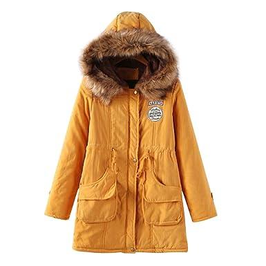 b6793fe3a Amazon.com: Women Thicken Warm Winter Coat Hood Parka Overcoat Long Jacket  Outwear: Clothing