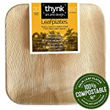 Thynk Palm Leaf Plates, All Natural and Compostable Disposable Plates, Eco Friendly and Elegant 9.5 inch square, 20 Count