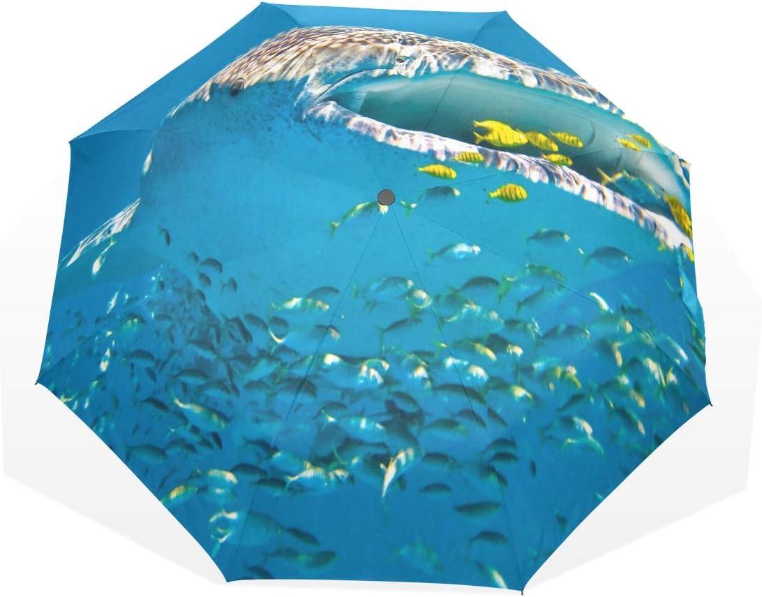 HangWang Umbrella Whale Shark Travel Golf Sun Rain Windproof Umbrellas with UV Protection for Kids Girls Boys