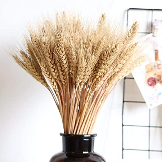 100Pcs Dried Pampas Grass Reed Bundle Home Wedding Flower Bunch Decor Props