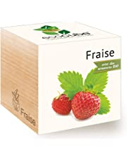 Feel Green Ecocube Noël, Idée Cadeau (100% Ecologique), Grow-Your-Own/Kit Prêt-à-Pousser, Plantes Dans Des Cubes En Bois 7.5cm, Produit En Autriche