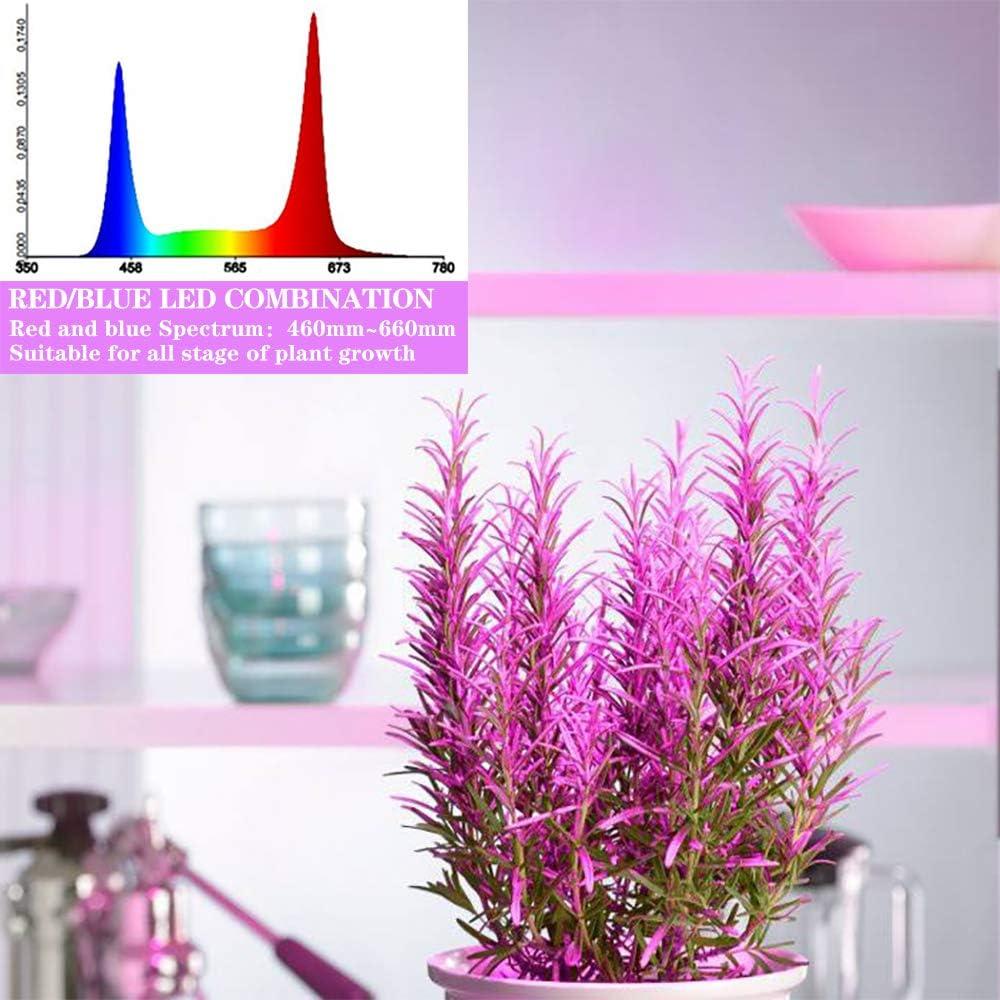 JUKOO Grow Lights for Indoor Plants Full Spectrum Plant Light 4 Packs 3//6//12H Auto Timer 6 Adjustable Level 120 LED Grow Light for Indoor Greenhouse Purple