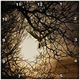3dRose Golden Sun Though a Tree Wall Clock, 10 by 10-Inch For Sale
