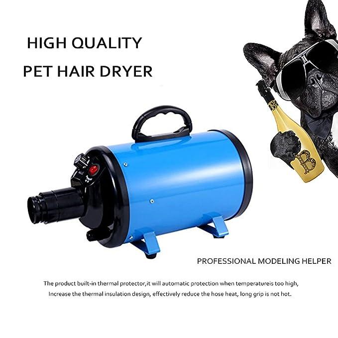 WILLIAM & KATE secador de peluquería para mascotas para perros y gatos con 4 boquillas 2400W 3.2HP temperatura ajustable para peluquería de mascotas secador ...