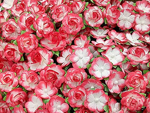NAVA CHIANGMAI 50 Pcs Red and White Tone Rose Mulberry Paper Flower Scrapbooking Wedding Doll House Supplies Card