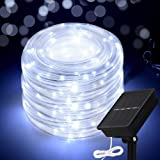 Honche LED Rope String Lights Outdoor Waterproof Garden Yard Home Decoration(Cool White 33FT 100L)