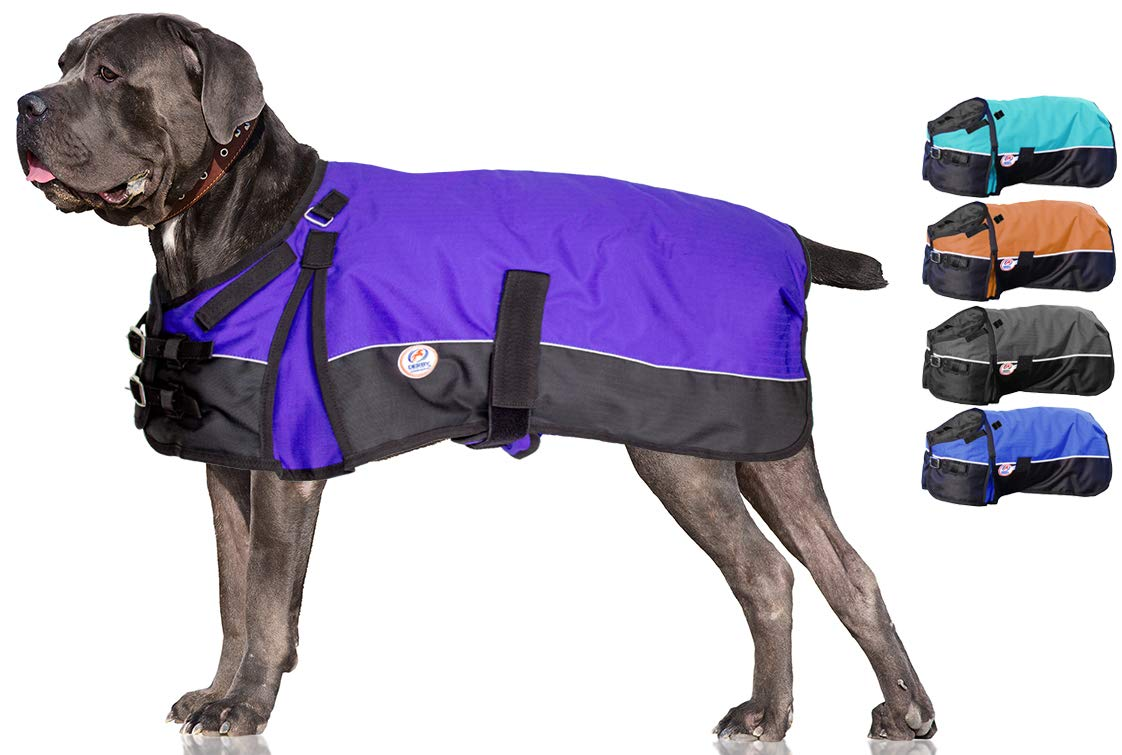 Derby Originals Horse Tough 600D Waterproof Ripstop Dog Coat with 1 Year Warranty - Medium Weight 150g Polyfil & Breathable Inner Lining  - Two Tone Design in Multiple Colors & Sizes by Derby Originals