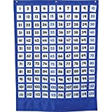 Carson-Dellosa CD-158180 Numbers 1-120 Board Pocket Chart with Cards, Grades PK-5 (Pack of 289)