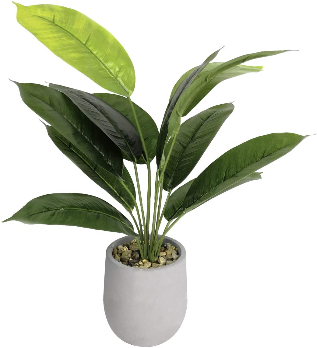 """Tuokor 16"""" Small Artificial Greenery Plants Ficus Elastica Green Leaf in Cement Pots for Indoor Outdoor Fake Plants Home Decoration"""