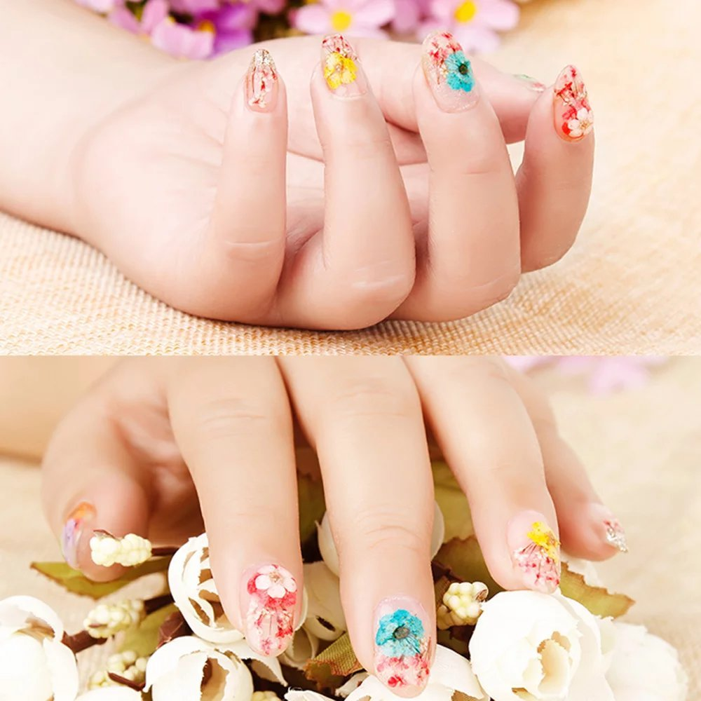 Amazon.com: 12 Colors Nail Dried Flowers 3D Nail Art Sticker, Natural Real Dry Flower, Nail Design Art Decorations Decals Accessory Nail Supplies, ...
