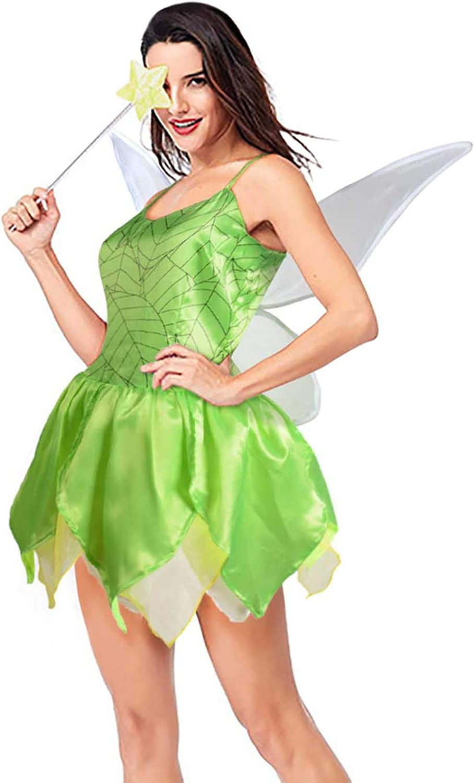 Adult Ladies Tinkerbell Style Fairy Costume