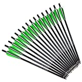 ZSHJG 16 inch Crossbow Carbon Arrows Crossbow Bolts with Vanes Feather and Replaced Broadhead