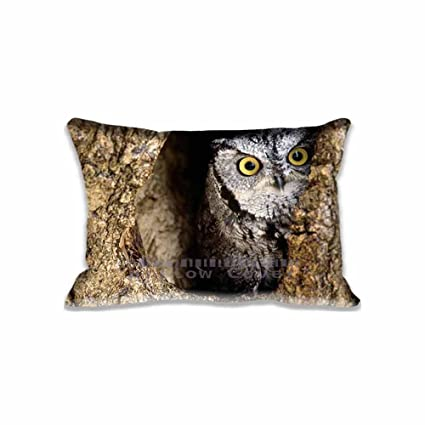 Amazon.com: 16x24inch Owl on Tree pillow cushion cases Polyester Cotton Eco friendly Home Pillow Protector(Twin Sides): Home & Kitchen