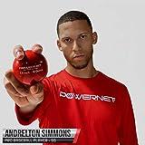 "PowerNet 2.8"" Weighted Hitting Batting Training"