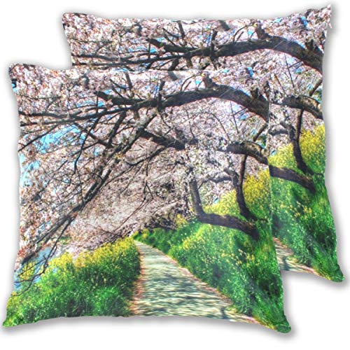 (Spring Tree Park River Throw Pillow Cover, Cotton Square Home Decor Pillowcases for Sofa Bedroom Car, Set of 2)