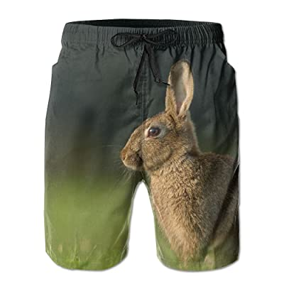 HFSST The Lovely Bunny in The Green Space CuteHandsome Fashion Summer Cool Shorts Swimming Trunks Beachwear Beach Shorts