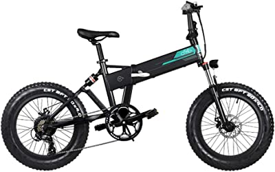 FIIDO M1 Electric Mountain Bike