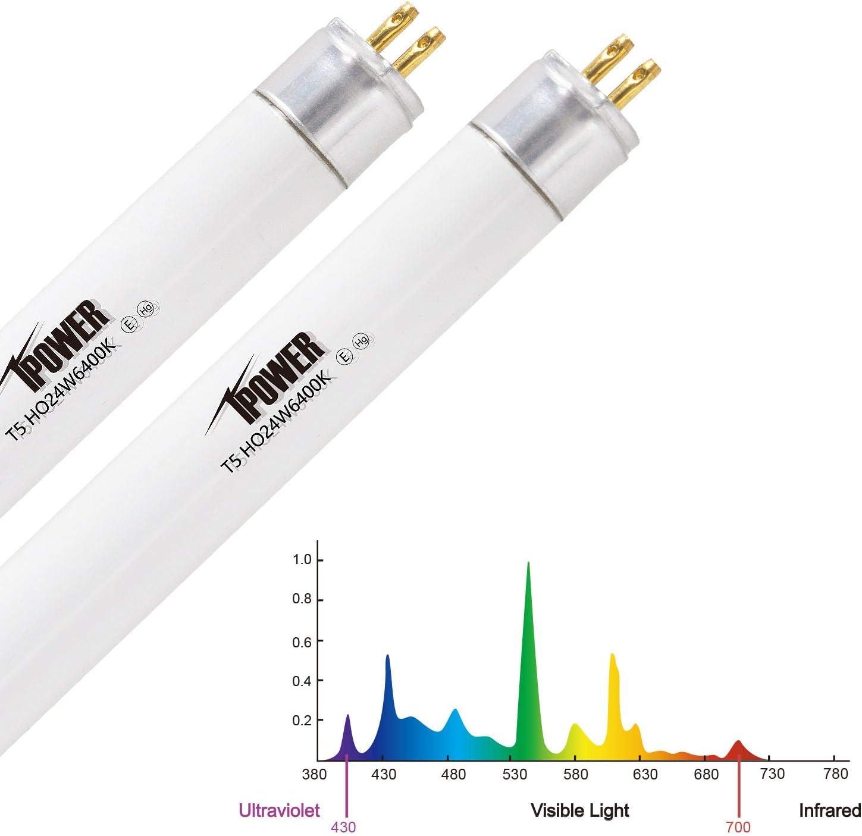 Sun Blaze T5 High Output Fluorescent Lamp