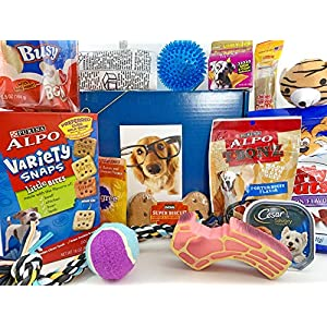 Jumbo Dog Gift Box Basket for Favorite Canine Fur Baby Perfect for Dog Lover Dog Birthday Christmas Furry Pet Friend Prime Treats Toys 6