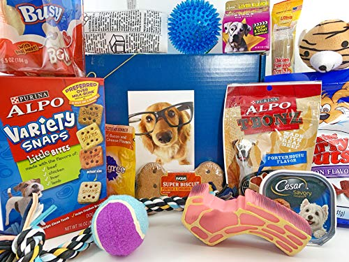 Mini Liver Snaps (Jumbo Dog Gift Box Basket for Favorite Canine Fur Baby Perfect for Dog Lover Dog Birthday Christmas Furry Pet Friend Prime Treats Toys)