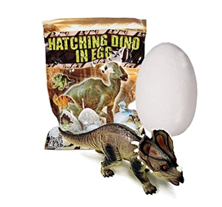 Un huevo de dinosaurio mágica - florece en 1 hora en el agua!