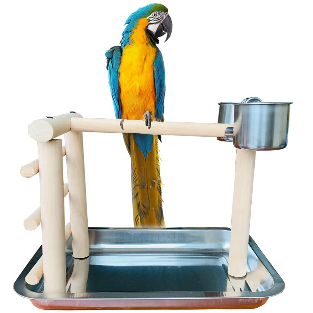 PINVNBY Parrot Perch Wood Training Stand Table Top Bird PlaygroundPlay Gym Playpen Ladders with Stainless Steel Feeders and Tray for Small Medium Parrot Budgies Parakeet Cockatiel Cockatoo Conure by PINVNBY
