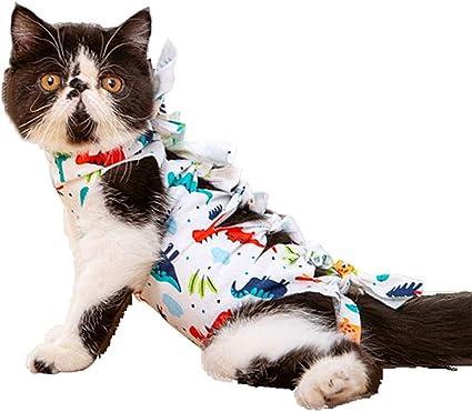wpaacb Traje De Recuperación para Gatos Ropa para Gatos ...